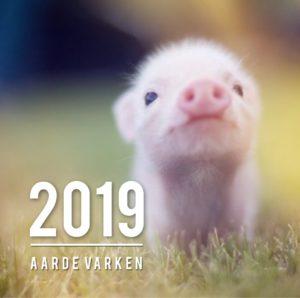 Chinees Nieuwjaar 2019 - Aarde Varken - Feng Shui Design Academy - 2