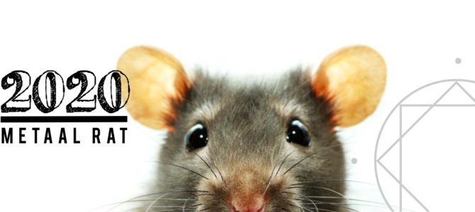 Feng Shui Nieuwjaarslezing 2020, jaar van de Metaal Rat