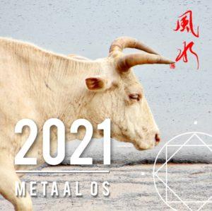 Chinees Nieuwjaar 2021 - Metaal Os - lezing bij Feng Shui Design Academy