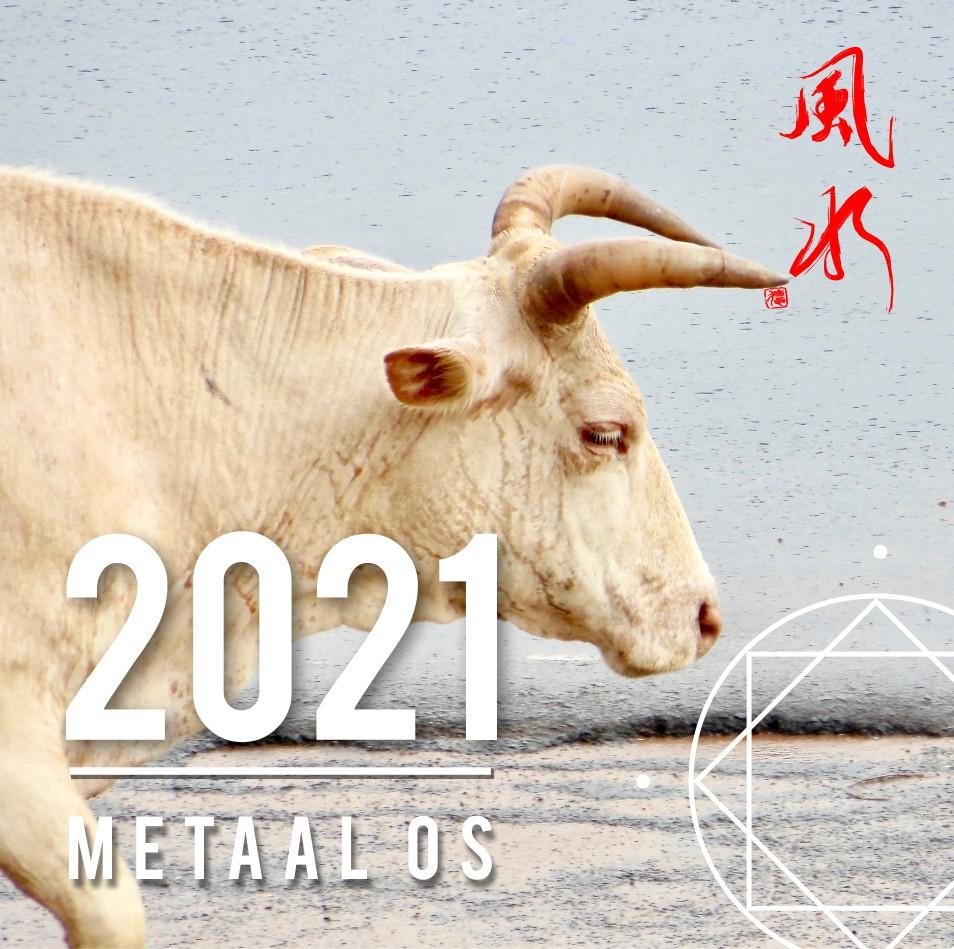 Chinees Nieuwjaar 2021 - Metaal Os - lezing bij Feng Shui Design Academy Ss