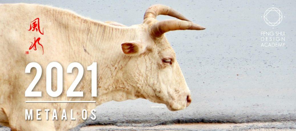 Feng Shui Nieuwjaarslezing 2021, jaar van de Metaal Os
